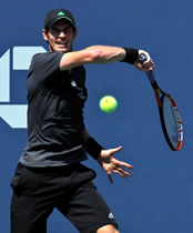 US Open 2014: Murray heads to Tsonga clash as holiday mood sweeps New York