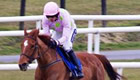 Cheltenham betting tips: Back Annie Power in World Hurdle at 7/1