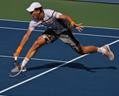 US Open 2014: Berdych hammers out Hewitt to claim 100th Major match-win
