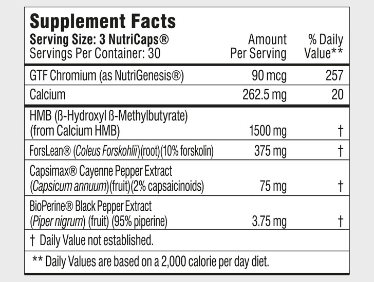 Burn Lab Pro Fat Burner Ingredients Label