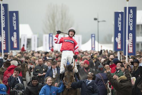 cheltenham betting 2017