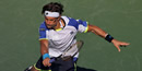US Open 2013: David Ferrer loses match but wins sportsmanship award