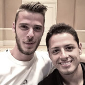 De Gea welcomes back Hernandez