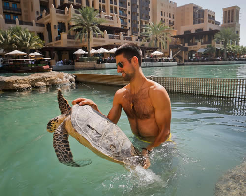 novak djokovic turtle