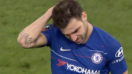 Gary Lineker sends message to emotional Cesc Fabregas after Chelsea FC cup win