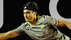 Ferrer triumphs over Karlovic in Doha