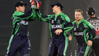 Cricket World Cup: Expect an open tournament