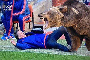 Louis van Gaal memes: The Man United manager's dive goes viral