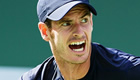 'Confident' Murray sets up Nishikori semi-final