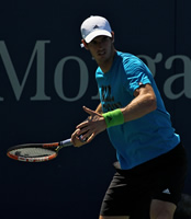 Valencia Open: Andy Murray on Tomas Berdych's tail for London place