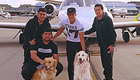 Photo: Arsenal's Alexis Sanchez jets off on holiday with his dogs