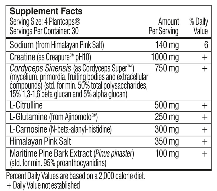 SPORT Pre-Workout ingredients