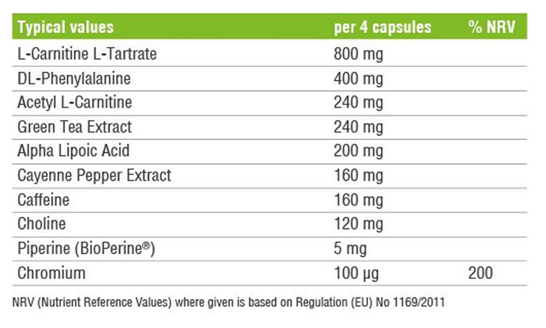 thermo fusion ingredients