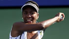 Miami 2014: Dominika Cibulkova knocks out Venus Williams